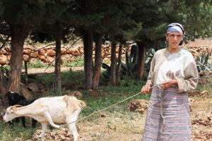 Memouna and her goats
